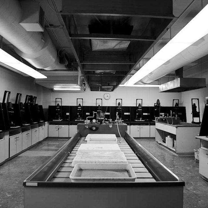 Directorio Fotográfico - Laboratorio Fotográfico