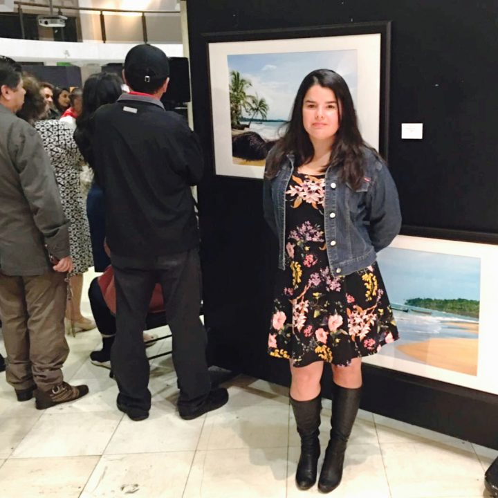Exhibition at the Joseph Carrier Art Gallery 2016