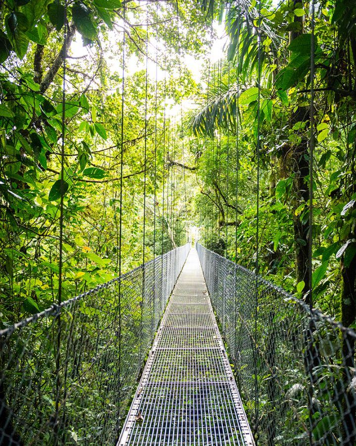 cristinaphotography_fineart_costarica_hangingbridge_skywalking